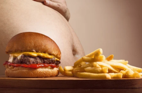 Obesity Increases 2020
