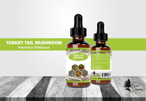 Turkey Tail Mushroom Tincture Wild Harvested 100% Satisfaction Guaranteed