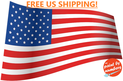 Free US Shipping Paint by Number