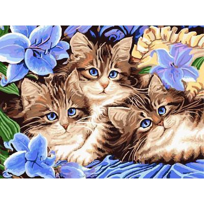 DIY Paint by Number kit for Adults on Canvas-Baby Kitten Blue Eyes-40x50cm (16x20inches)
