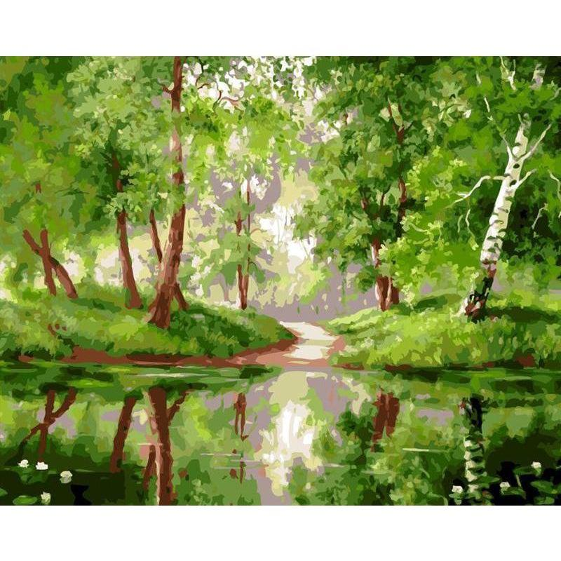DIY Paint by Number kit for Adults on Canvas-Birch Forrest-40x50cm (16x20inches)