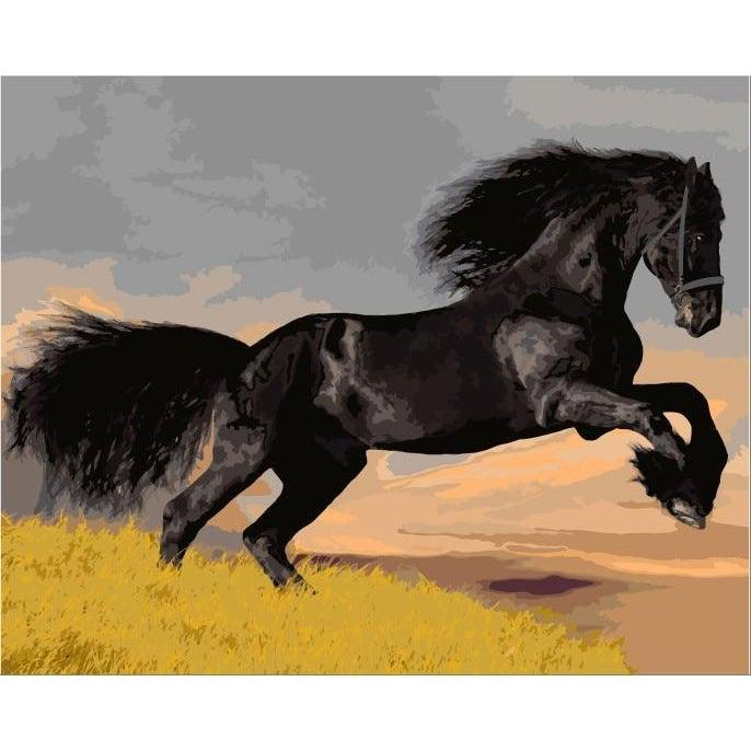 DIY Paint by Number kit for Adults on Canvas-Black Horse-40x50cm (16x20inches)