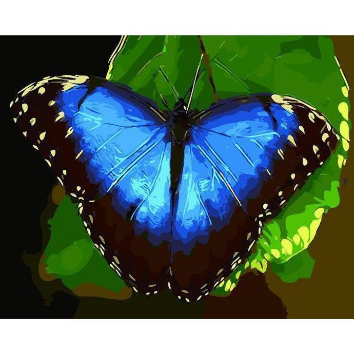 Blue Butterfly - Paint by Numbers Kit