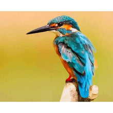 Blue Kingfisher - Paint by Numbers Kit