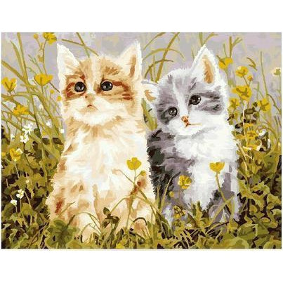 DIY Paint by Number kit for Adults on Canvas-Cat Friends In Garden-40x50cm (16x20inches)