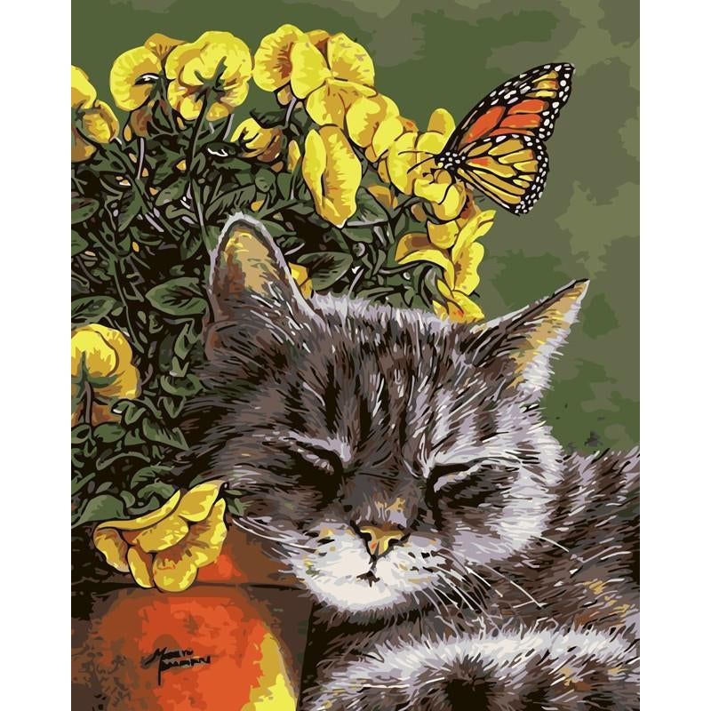 DIY Paint by Number kit for Adults on Canvas-Cat Nap-40x50cm (16x20inches)