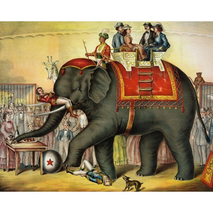Circus Elephant - Paint by Numbers Kit