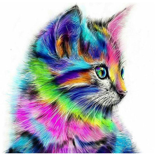DIY Paint by Number kit for Adults on Canvas-Crayon Cat-40x50cm (16x20inches)