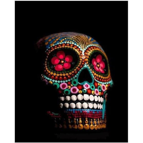Dark Skull - Paint by Numbers Kit