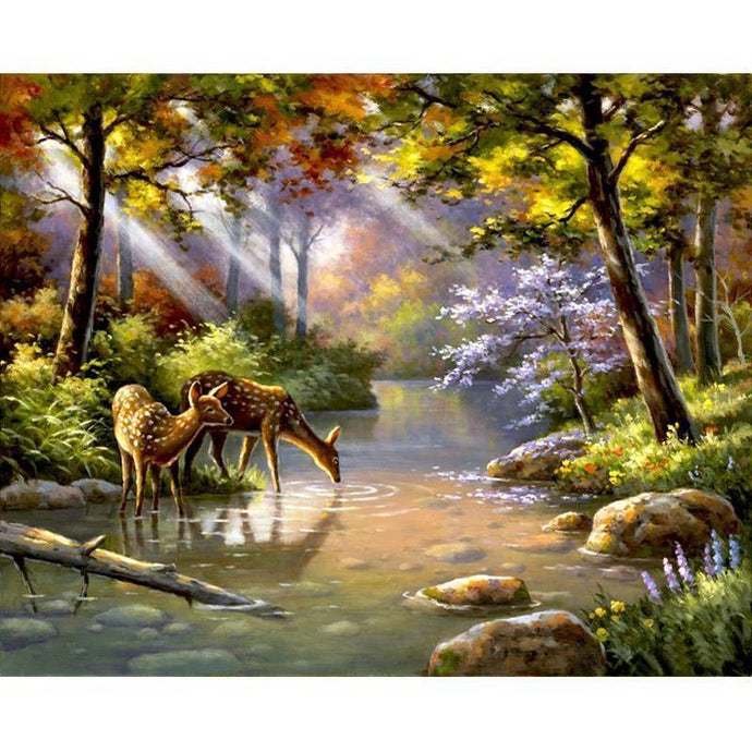 DIY Paint by Number kit for Adults on Canvas-Deer Drinking the Morning Dew-40x50cm (16x20inches)