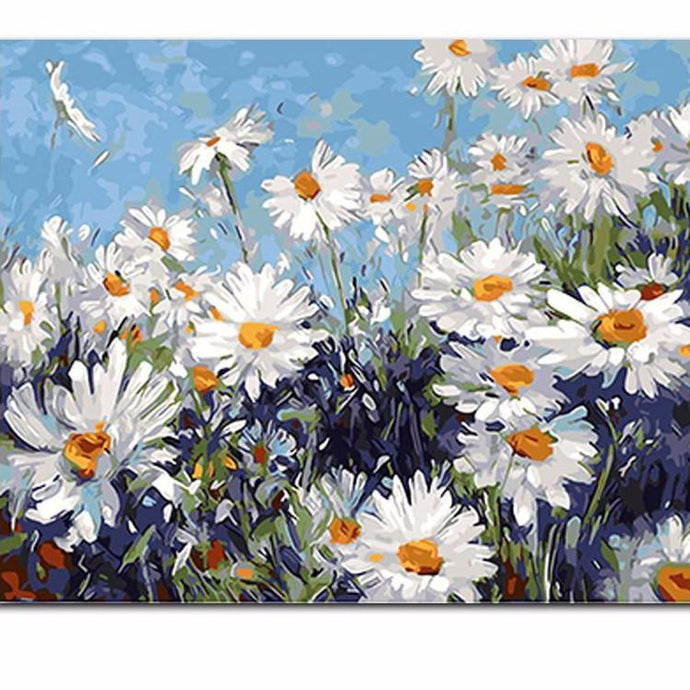 DIY Paint by Number kit for Adults on Canvas-Field of Daisies-40x50cm (16x20inches)