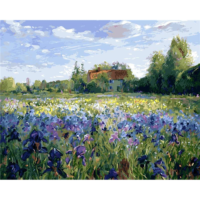 DIY Paint by Number kit for Adults on Canvas-Field of Purple Flowers-40x50cm (16x20inches)