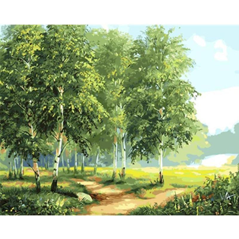 DIY Paint by Number kit for Adults on Canvas-Forest on the Plain-40x50cm (16x20inches)