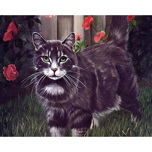DIY Paint by Number kit for Adults on Canvas-Garden Cat-Painting & Calligraphy