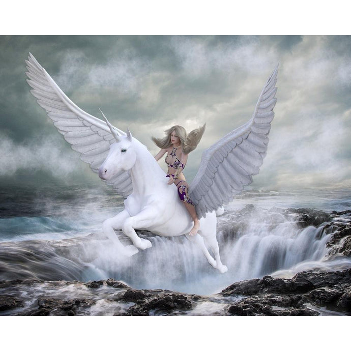 DIY Paint by Number kit for Adults on Canvas-Her Pegasus-Paint By Number