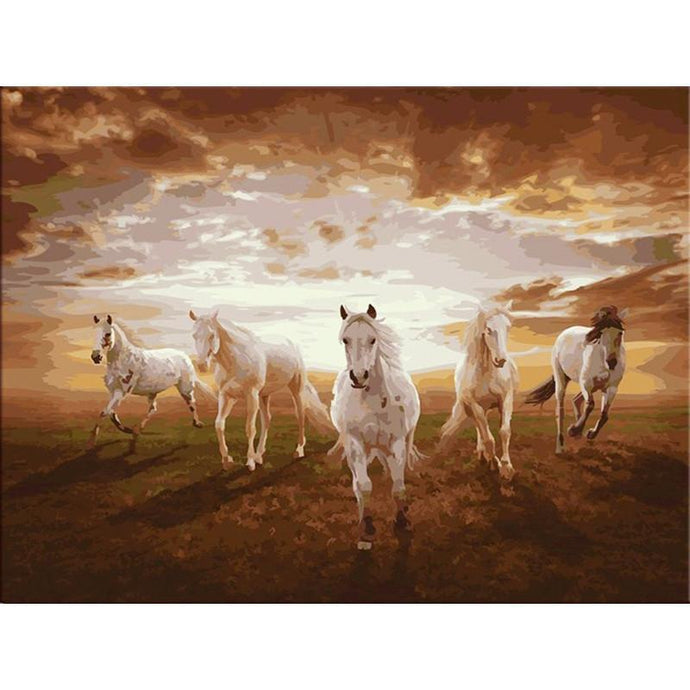Horse Race at Sunset - Paint by Numbers Kit
