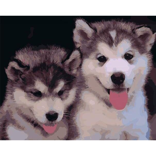 DIY Paint by Number kit for Adults on Canvas-Husky Puppy Buddies-40x50cm (16x20inches)