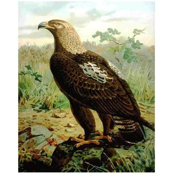 DIY Paint by Number kit for Adults on Canvas-Imperial Eagle-Painting & Calligraphy