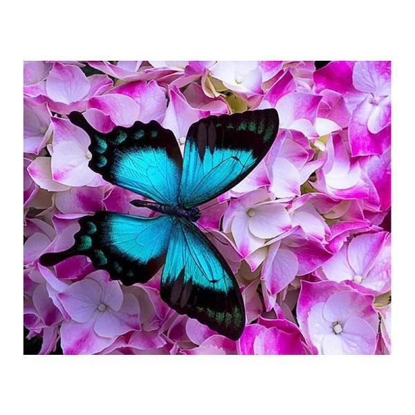 DIY Paint by Number kit for Adults on Canvas-Laying Butterfly-40x50cm (16x20inches)