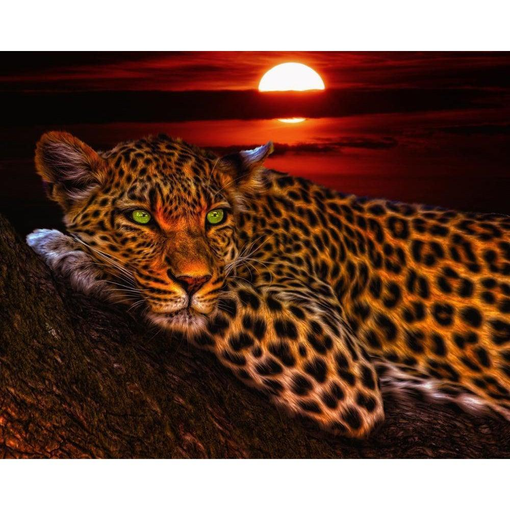 DIY Paint by Number kit for Adults on Canvas-Leopard Glare-Paint By Number