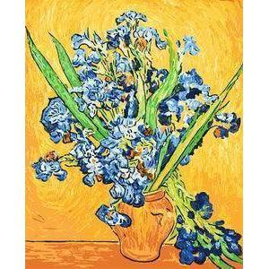 DIY Paint by Number kit for Adults on Canvas-Les Iris - Van Gogh-Clean PBN