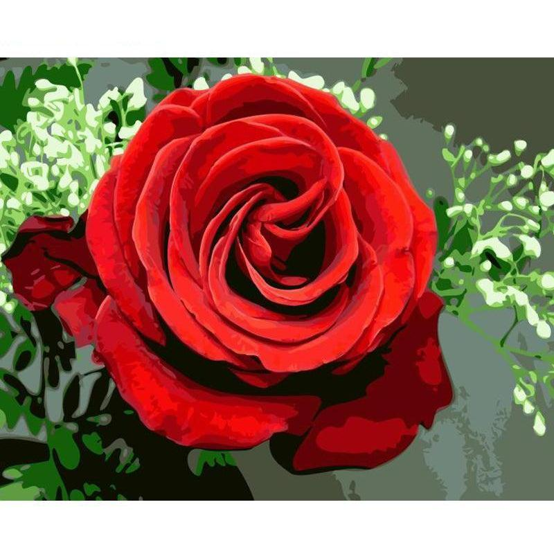 DIY Paint by Number kit for Adults on Canvas-Long Stemmed Rose-40x50cm (16x20inches)