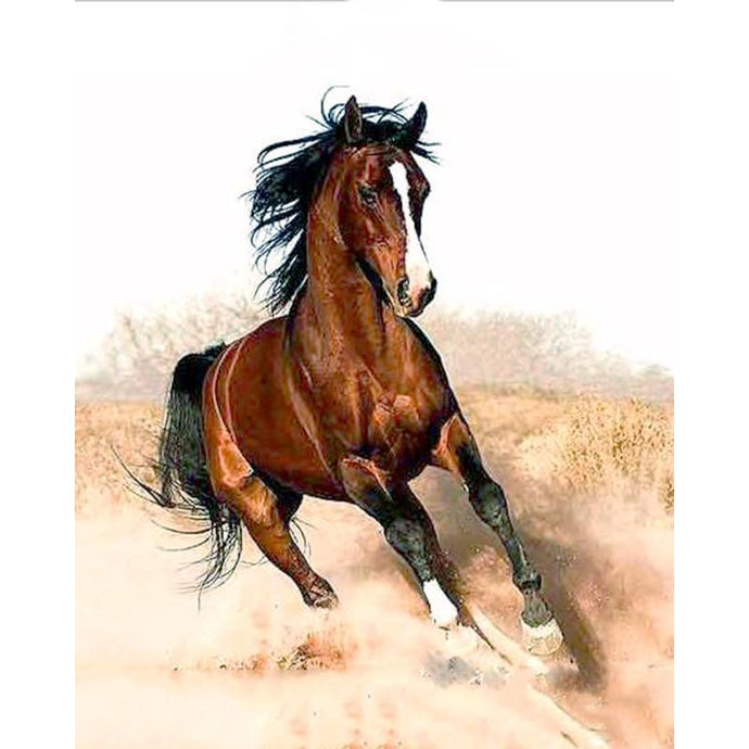 DIY Paint by Number kit for Adults on Canvas-Mighty Horse Galloping-40x50cm (16x20inches)