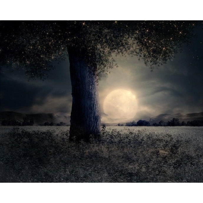 Moonlit Tree - Paint by Numbers Kit