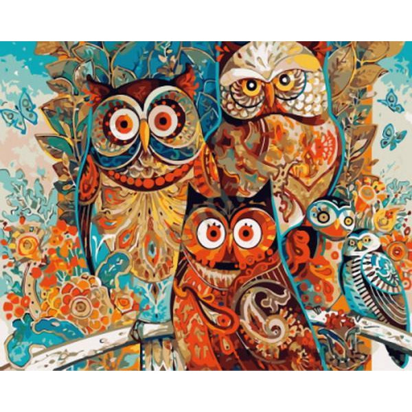DIY Paint by Number kit for Adults on Canvas-Owls and Butterflies-40x50cm (16x20inches)