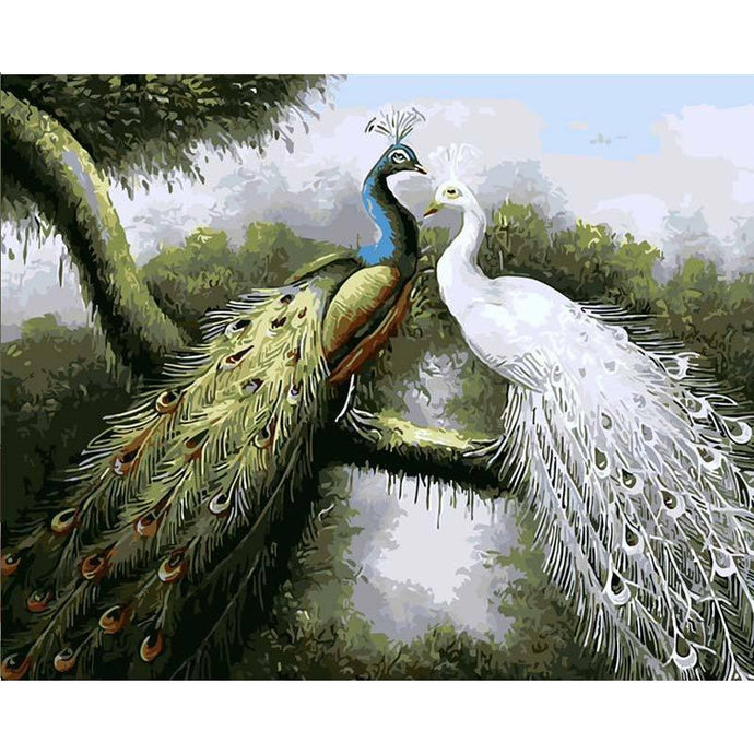 DIY Paint by Number kit for Adults on Canvas-Peacock Love-40x50cm (16x20inches)