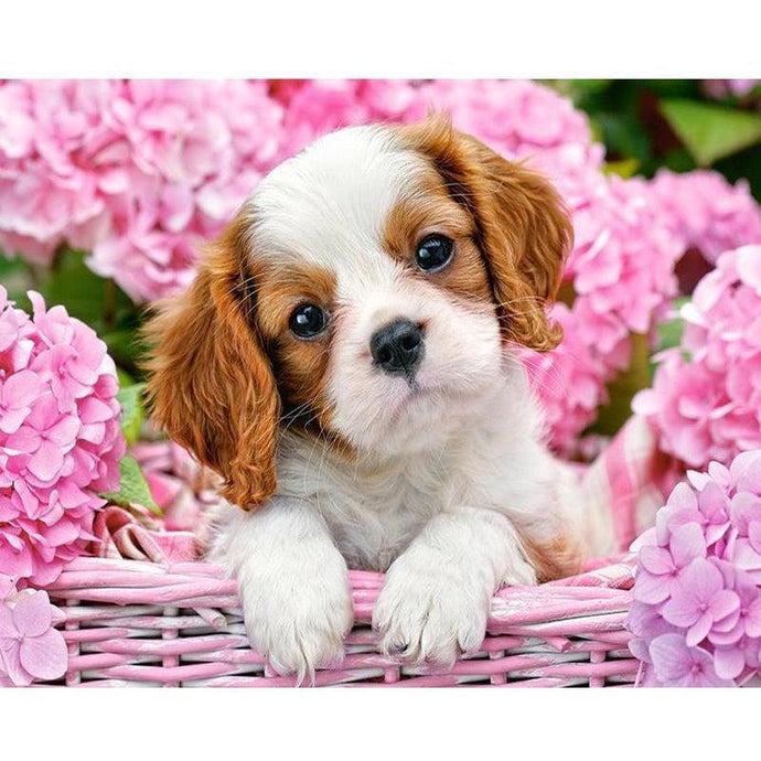 DIY Paint by Number kit for Adults on Canvas-Puppy in Pink-40x50cm (16x20inches)