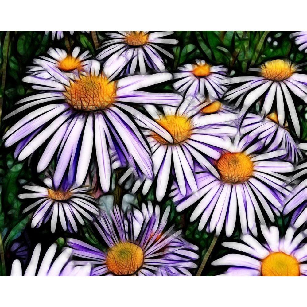 Purple Daisies - Paint by Numbers Kit