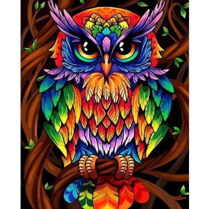 DIY Paint by Number kit for Adults on Canvas-Rainbow Owl-Painting & Calligraphy