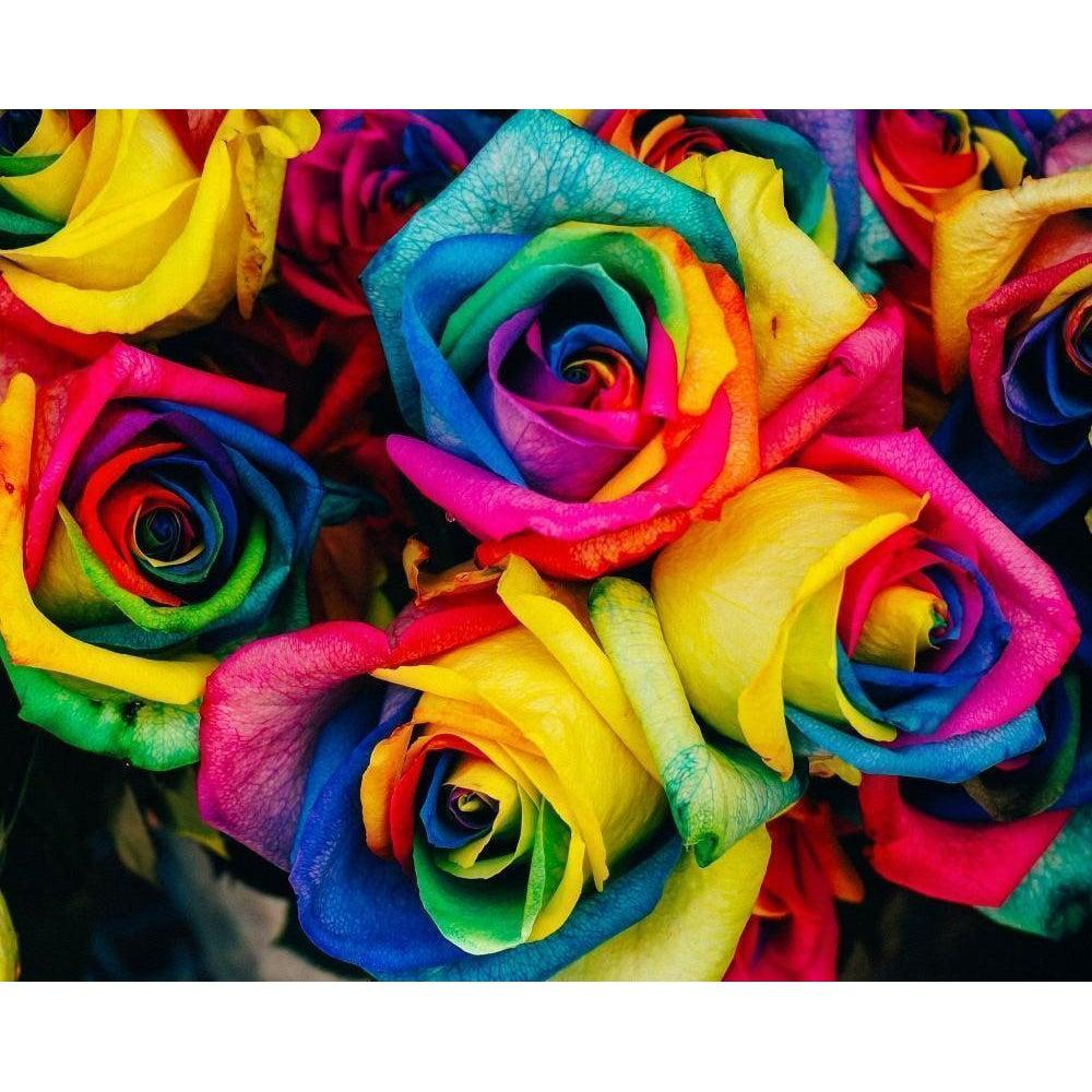 DIY Paint by Number kit for Adults on Canvas-Rainbow Roses-Clean PBN