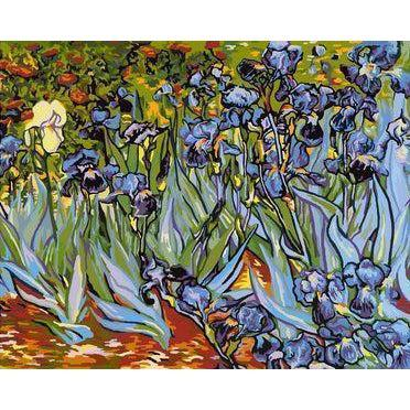 DIY Paint by Number kit for Adults on Canvas-[Ships from USA] Irises - Van Gogh-Clean PBN