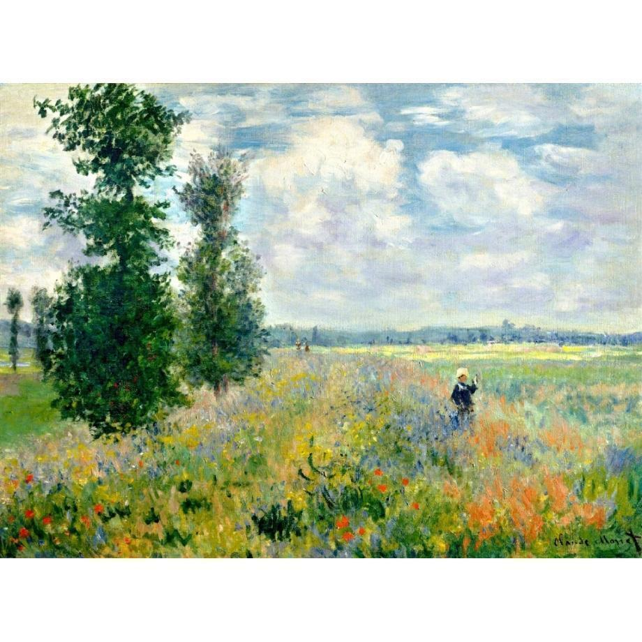 DIY Paint by Number kit for Adults on Canvas-[Ships from USA] Poppy Fields near Argenteuil - Claude Monet-Clean PBN