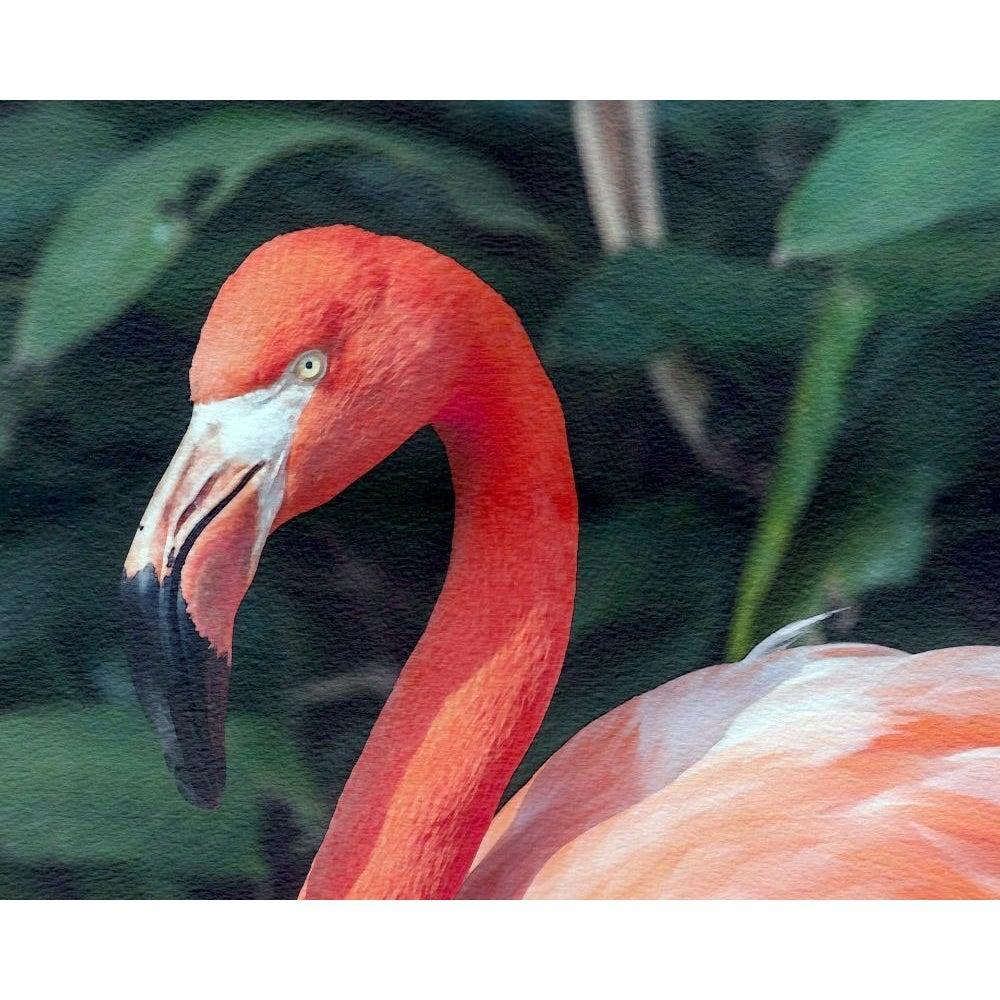 DIY Paint by Number kit for Adults on Canvas-Silent Flamingo-Clean PBN