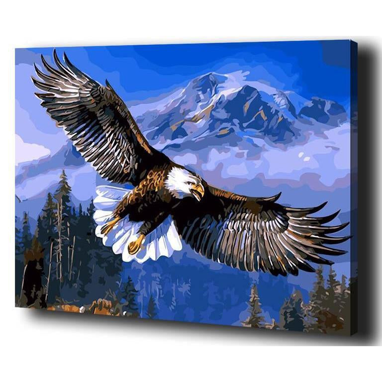 DIY Paint by Number kit for Adults on Canvas-Soaring Eagle-40x50cm (16x20inches)