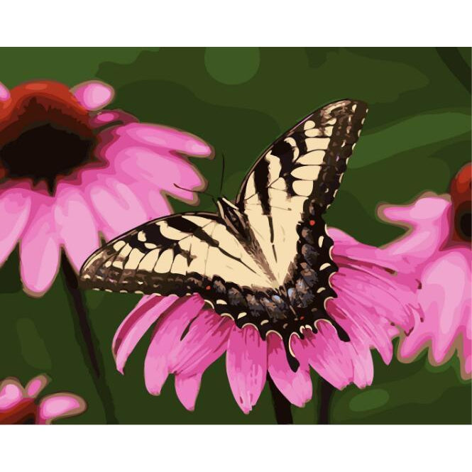 DIY Paint by Number kit for Adults on Canvas-Spring Butterfly-40x50cm (16x20inches)