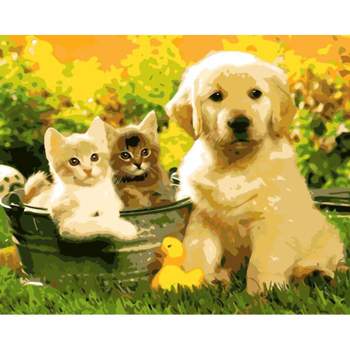 DIY Paint by Number kit for Adults on Canvas-Spring Puppies and Kittens-40x50cm (16x20inches)