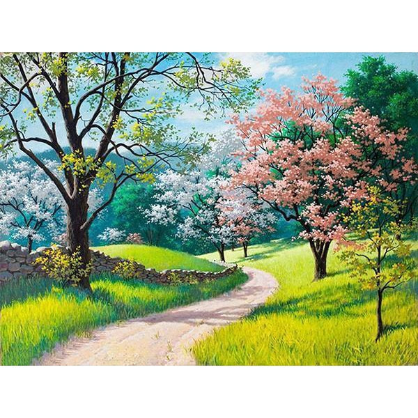 DIY Paint by Number kit for Adults on Canvas-Spring Walk in the Park-40x50cm (16x20inches)