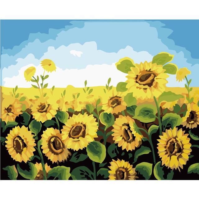 DIY Paint by Number kit for Adults on Canvas-Sunflower Field-40x50cm (16x20inches)