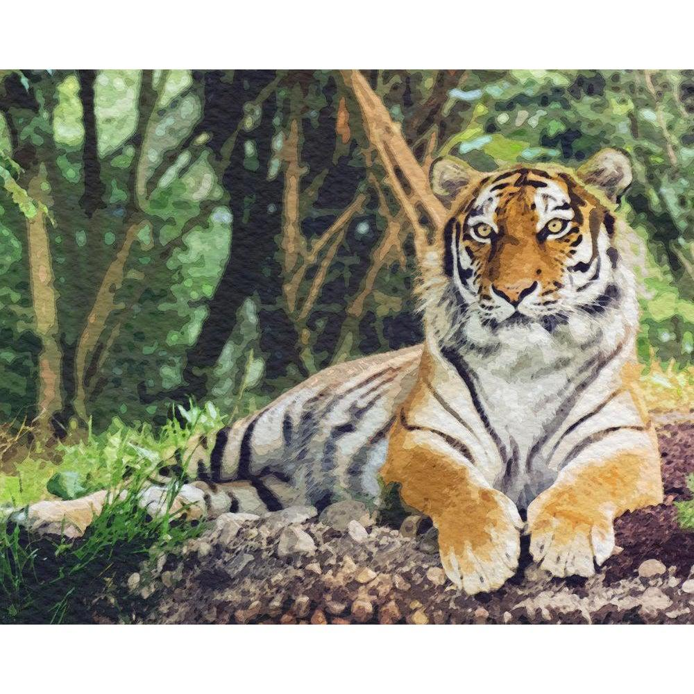 DIY Paint by Number kit for Adults on Canvas-Tender Tiger-