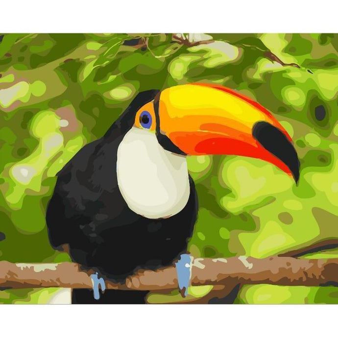 DIY Paint by Number kit for Adults on Canvas-Tranquil Tucan-40x50cm (16x20inches)