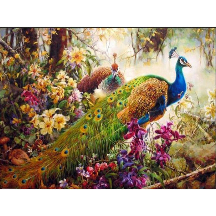 DIY Paint by Number kit for Adults on Canvas-Vibrant Peacock [LIMITED PRINT]-40x50cm (16x20inches)