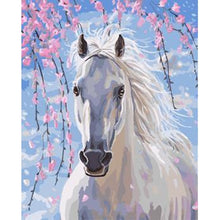 DIY Paint by Number kit for Adults on Canvas-White Horse-40x50cm (16x20inches)