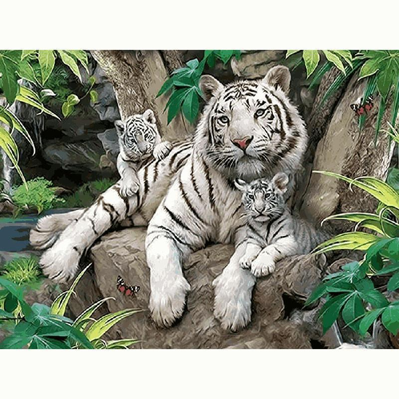 DIY Paint by Number kit for Adults on Canvas-White Tiger with Cubs-40x50cm (16x20inches)