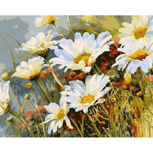 DIY Paint by Number kit for Adults on Canvas-Wild Daisies-40x50cm (16x20inches)