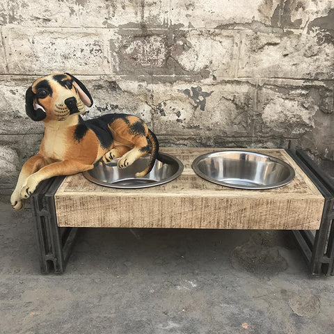 Medium animal pet feeder dining set