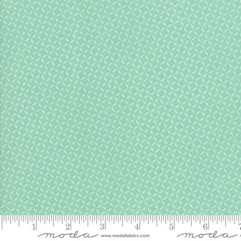Sunnyside Up - Corey Yoder - Rainwashed - 29056-31 - Fabric is sold in 1/2 yard increments